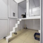 Ivy Boarding Cattery