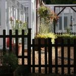 Secret Garden Cattery
